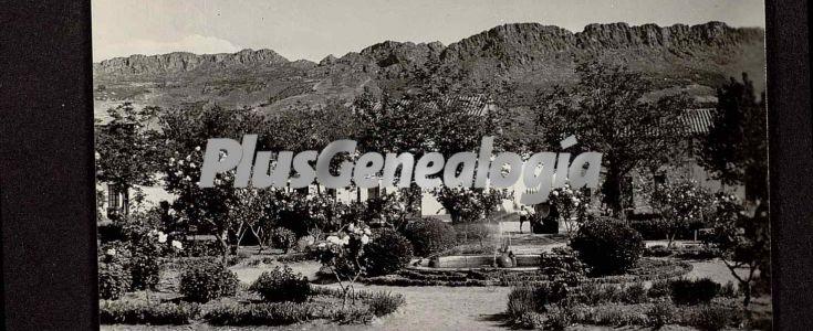 Fotos antiguas de CABEZA DE BUEY