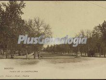 Paseo de la Castellana de Madrid