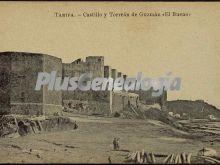 Castillo y torreón de guzmán