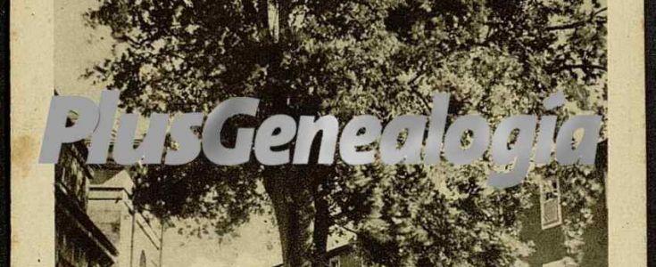 Fotos antiguas de GUERNIKA