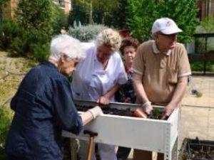 Plantación de verduras y hortalizas en los huertos terapéuticos de los centros Amma