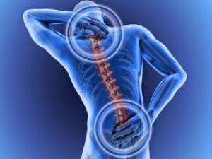 Prevención sobre trastornos músculo-esqueléticos