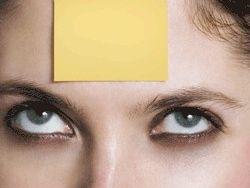 ¿Cómo mantener los recuerdos en la memoria?