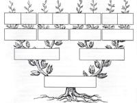 Los árboles genealógicos decostados