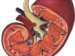 Detección y tratamiento del cáncer de riñón
