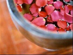 ¿En qué puede ayudarnos las Terapias Florales?