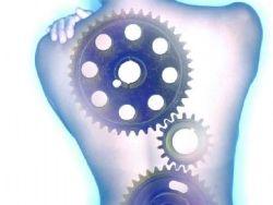 ¿Qué es la hernia de disco?
