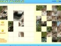 Puzzle. Juegos online