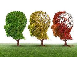 ¿Existen distintos tipos de demencia?