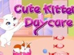 Cuida de una preciosa gatita