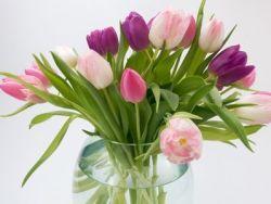 El truco de la abuela para mantener las flores frescas más tiempo