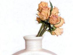 Trucos de la abuela para que las flores duren más