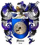 Escudo del apellido Molina (Vizcaya)