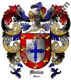 Escudo del apellido Molina (Murcia)