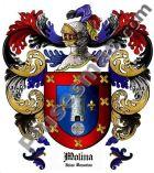Escudo del apellido Molina (Islas Canarias)