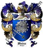 Escudo del apellido Molina (Zaragoza)