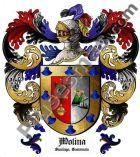 Escudo del apellido Molina (Santiago Guatemala)
