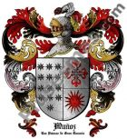 Escudo del apellido Muñoz (Las Palmas de Gran Canaria)