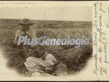 Niños en el campo de segovia