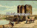 Castillo de calahorra y puente romano de córdoba