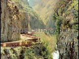 Desfiladero de los bellos en el valle de sajambre (picos de europa, león)