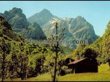 La peguera. camino de posada de valdeón a cain (picos de europa, león)