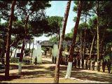 Campamento la forestal de rota (cádiz)