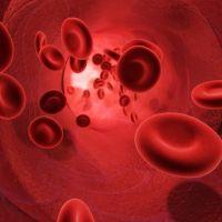 Glóbulos rojos