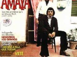 Los Amaya vol. 2 (1977-1979)