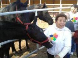 Amma incluye una Sesión de terapia asistida con caballos en su centro de Tenerife