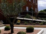 Residencia gladiolos, S.L.